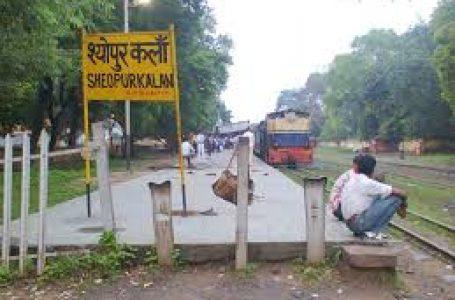 अब ऐसी ट्रेन से क्या लाभ जो साइकिल से भी धीमी चल रही ग्वालियर -श्योपुर  नैरोगेज ट्रेन ।