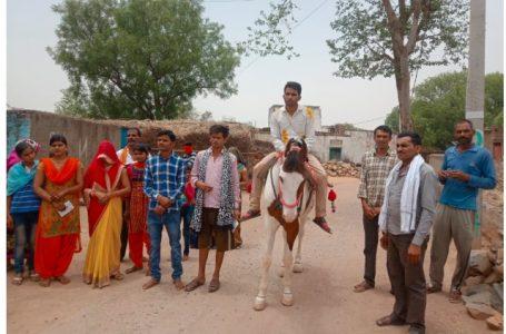शिवपुरी न्यूज़ – घोड़ी पर सवार होकर  दूल्हा वोट डालने पहुंचा।